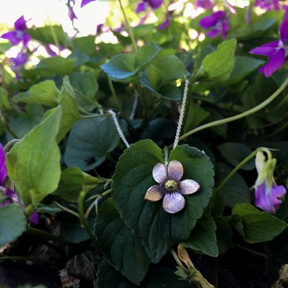 Violet flower pendant, individually crafted and enamelled sterling silver flower necklace