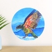 Kea small dot wall decal by Ira Mitchell-Kirk
