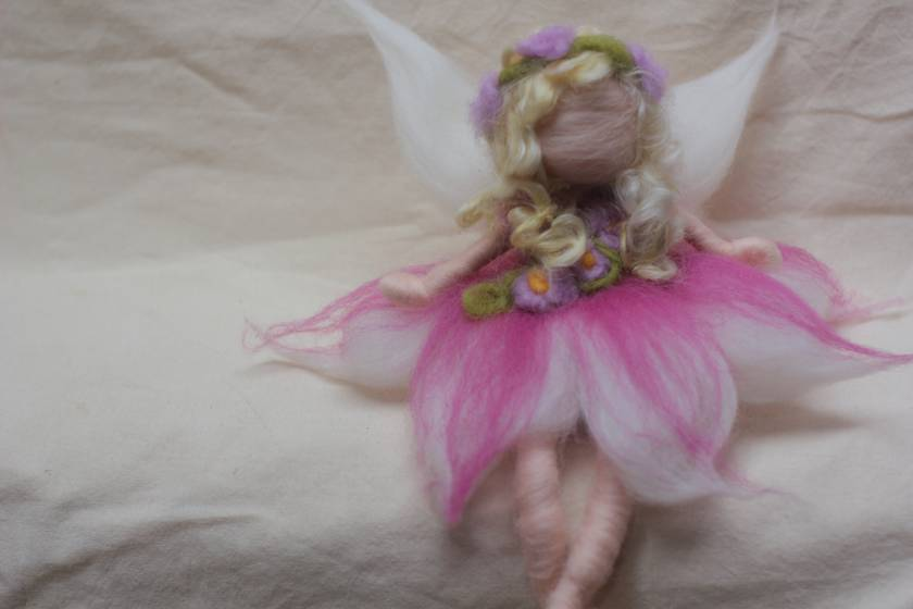 Orchid Pink Fairy