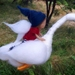 Pixie Riding A Goose