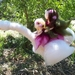 Fairies Riding A Goose