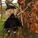 Wilhelmina  the Witch