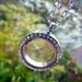 A Single wish with Bling - A Window locket with a Dandelion wish and Crystals