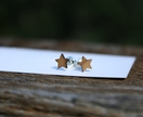 L.asercut star stud earrings