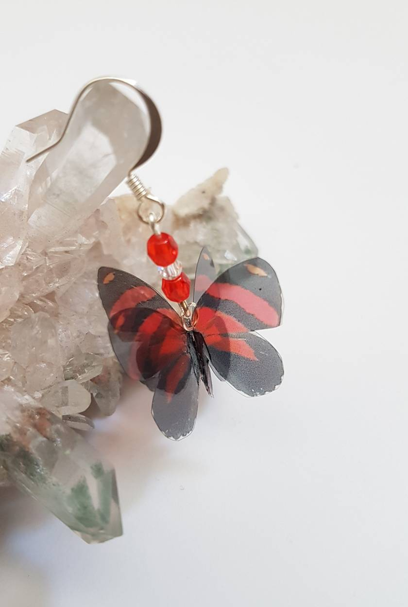 Callicore cynosura butterfly earrings