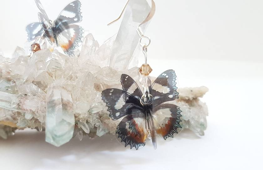 Brown, orange, black and white butterfly earrings