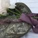 2m plant-dyed sari silk ribbon - purple