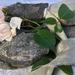 Plant-dyed recycled sari silk ribbon 5m - Dove