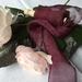 Plant-dyed silk ribbon 3m - Grape