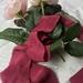 Plant-dyed silk ribbon 3m - Burgundy