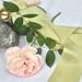 Plant-dyed silk ribbon 3m - Pistachio