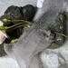 5m plant-dyed recycled silk chiffon ribbon - Blue Smoke