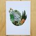 Tuatara Two' A4 Fine Art Print