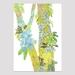 Arthurs Pass Lichen Print