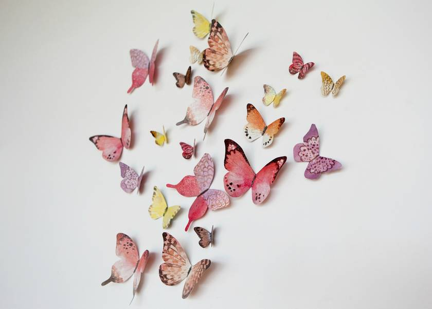 Pretty  Butterflies