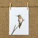 Hummingbird Bird Print A5