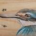 Kingfisher close up - original art on rustic timber!