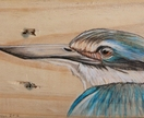 Kingfisher close up - original art on rustic timber!