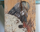 Tui in flax with real lichen - beautiful original art on rustic timber!