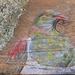 Kereru with lichen - beautiful original art on rustic timber!