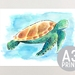 Sea Turtle - A3 Print of Original Watercolour Painting