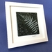 """""""Fossilised Silver Fern"""" - Fused Glass Picture"""