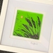 """Kiwi Classics"" - Fused Glass Pictures - hand painted"