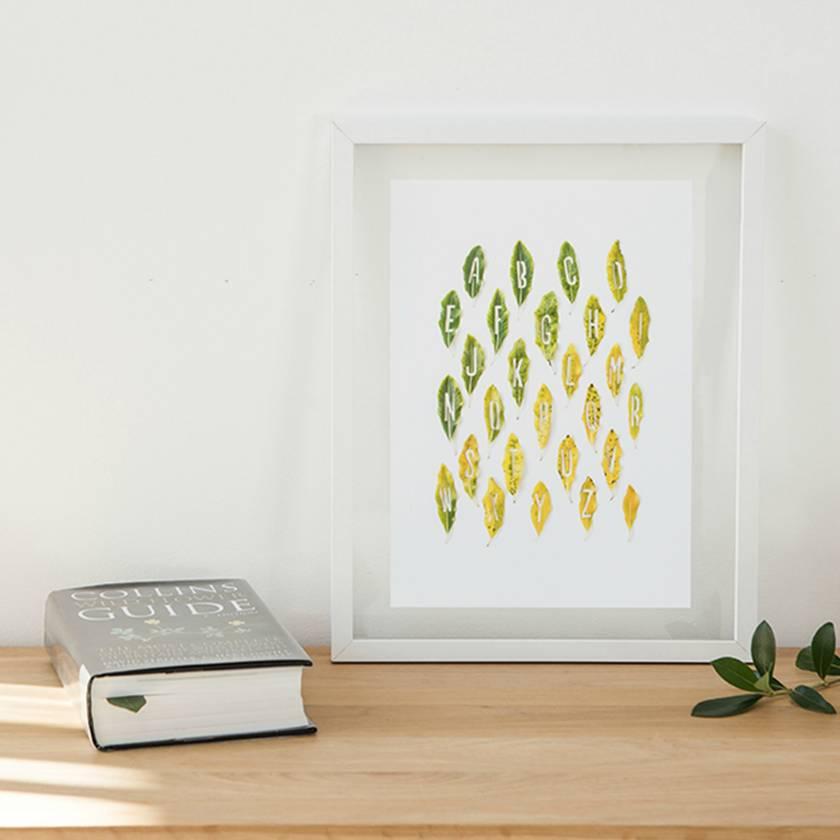 Natures Alphabet Print