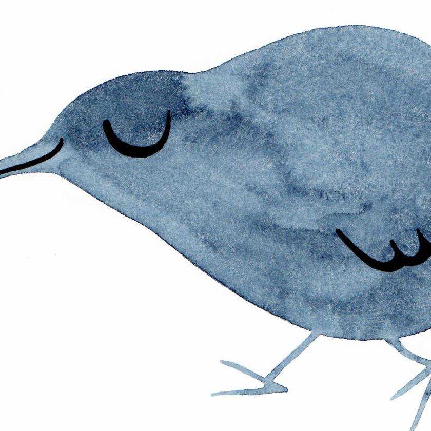 A4 original watercolour– Kiwi Indigo