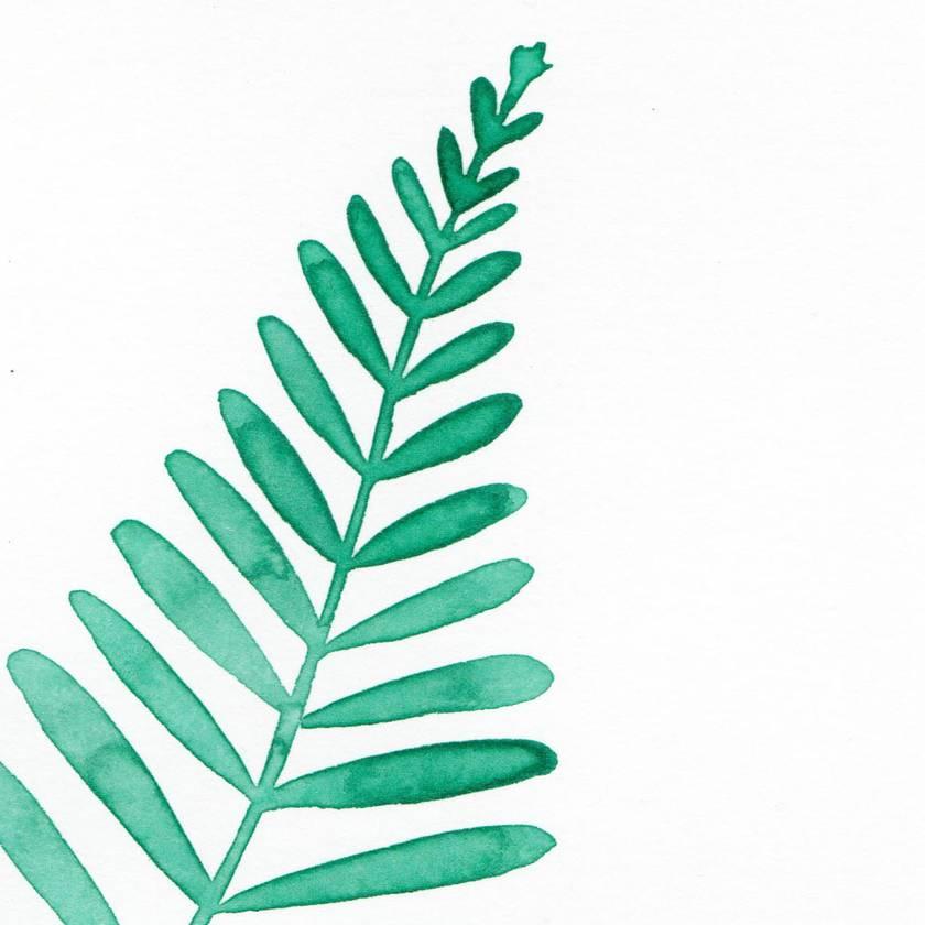 A4 original watercolour– Fern