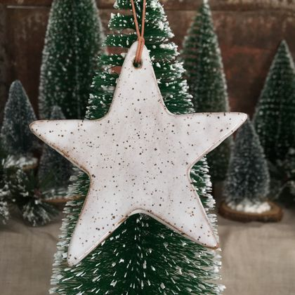 Mudbird Speckled Star Ornament