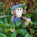 Oscar the Monkey