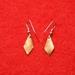 Earrings(copper)