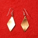 Earrings (copper)