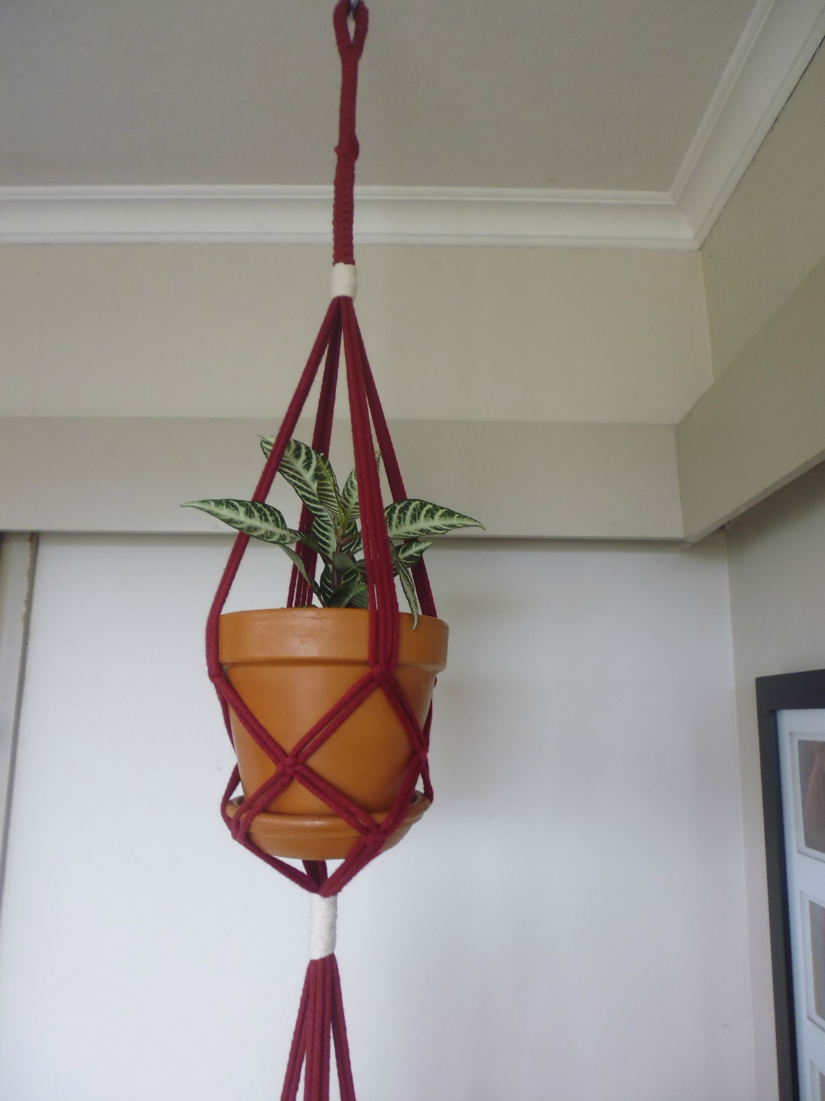how to make a macrame pot plant hanger