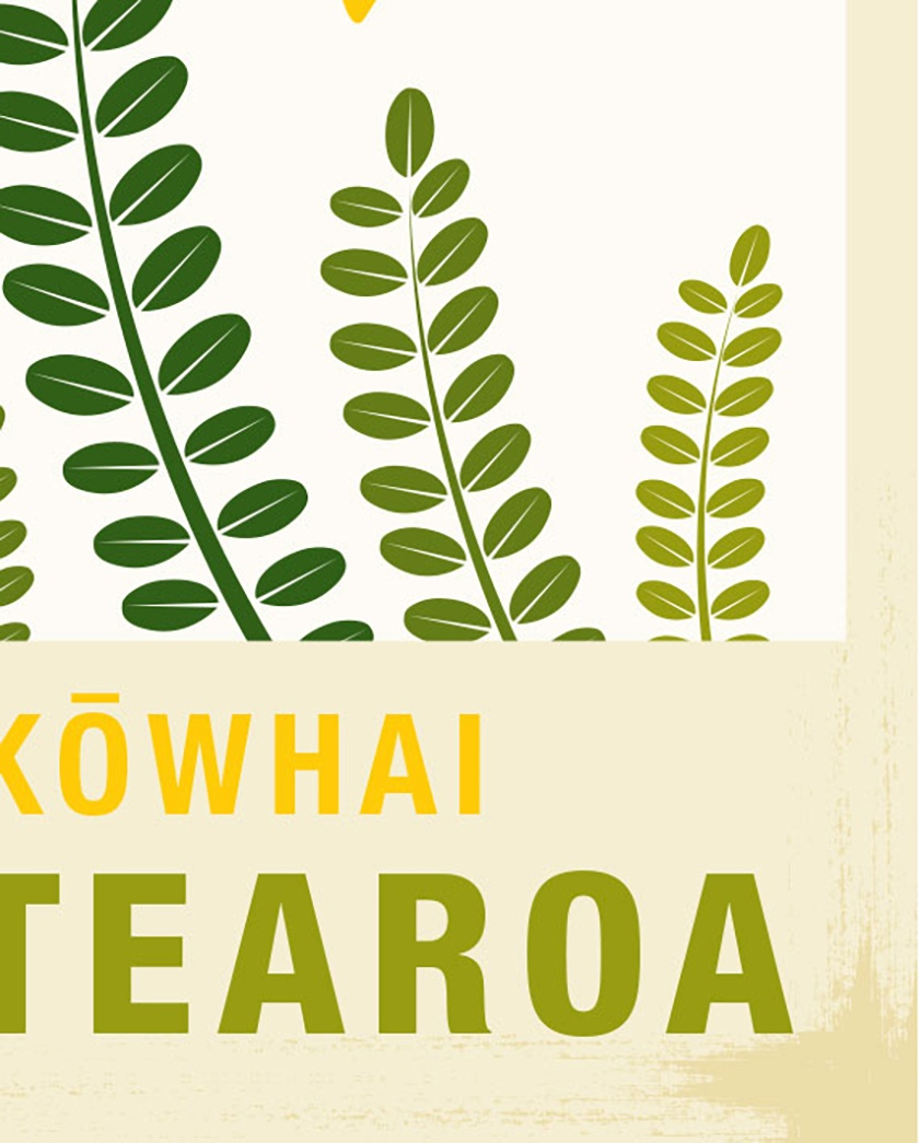 Kowhai illustration. A4 print New Zealand native flower series.