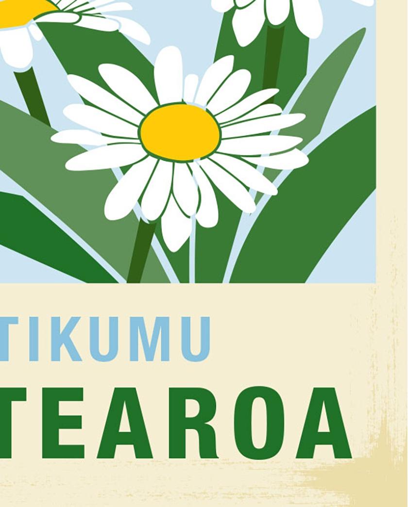 Tikumu illustration. A4 print New Zealand native flower series.
