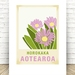 Horokaka illustration.  A4 print New Zealand native flower series.