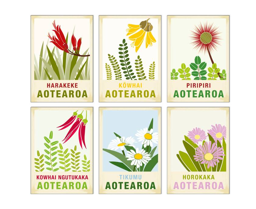 6 card gift pack of A6 greeting cards with craft envelopes – New Zealand native flower series illustration.