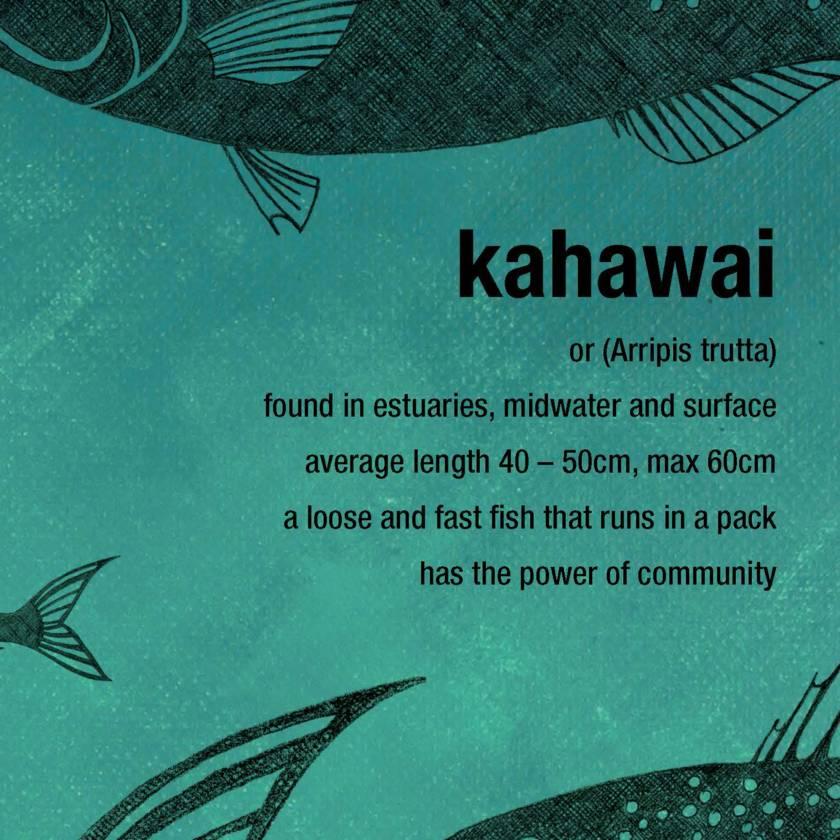 Kahawai limited edition print – New Zealand native fish series