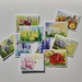 Gift Pack of 10 Assorted Pretty floral Cards
