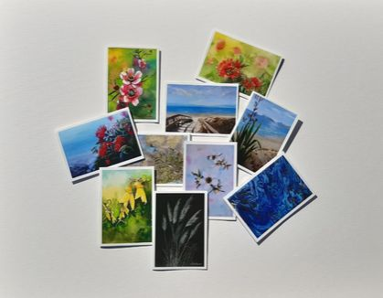 Gift Pack of 10 Assorted NZ Flowers and Scene Cards