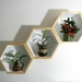 Deeper Hexagon Shelves (White inside) - Set of 3