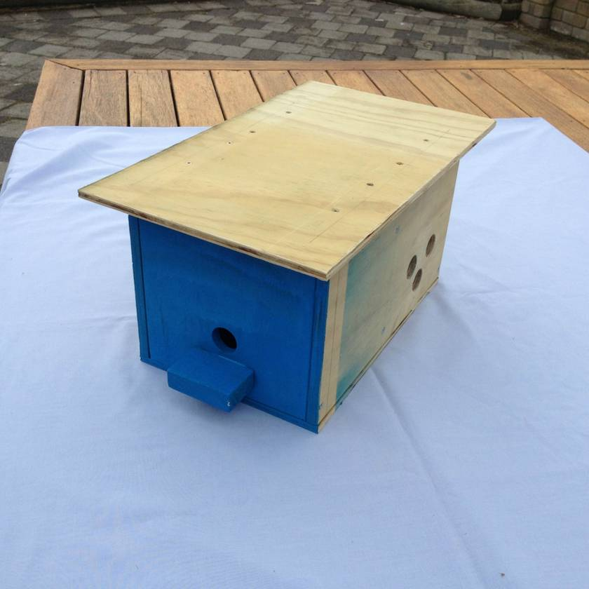 Bumble Bee Hive Box - Free shipping within NZ