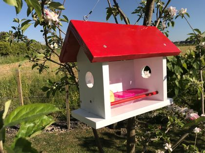 Bird Feeder Painted (Red or Blue)
