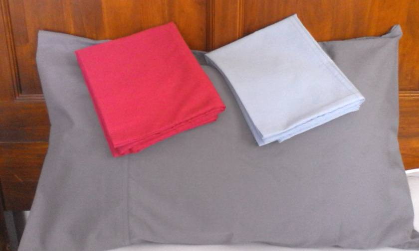 Pair of Standard Size Pillow Cases
