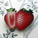 sale - Strawberry brooch
