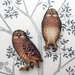 woodcut magnet duo.  Owls.