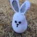 Hoppy the Bunny