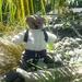 Trevor the trekking bear.